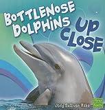 Bottlenose Dolphin up Close, Jody Sullivan Rake, 1429622644