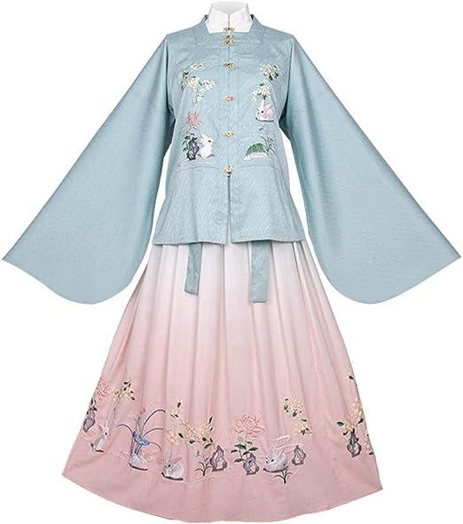 Vestido Chino Hanfu del Invierno de Las Mujeres de la Falda del ...
