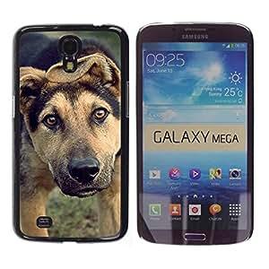 YiPhone /// Prima de resorte delgada de la cubierta del caso de Shell Armor - Mutt Wolfhound Shorthair Mongrel Dog - Samsung Galaxy Mega 6.3 I9200 SGH-i527