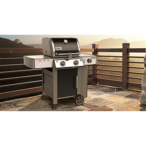 Weber Genesis Ii Lx E 240 Natural Gas Grill Grill