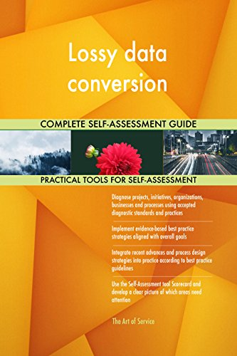 Lossy data conversion Toolkit: best-practice templates, step-by-step work plans and maturity diagnostics (Data Conversion Best Practices)