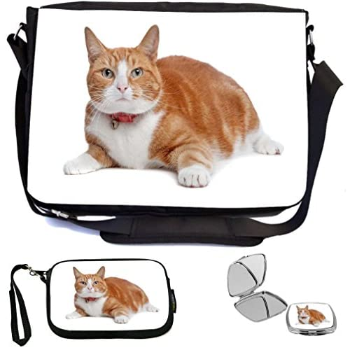 Rikki Knight European Short Haired Ginger And White Cat Design COMBO Multifunction Messenger Laptop Bag - with padded insert for School or Work - includes Wristlet & Mirror