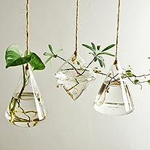 Ivolador 3 Geometric shape Types Terrarium Container Flower Planter Hanging Glass Home Garden Decor