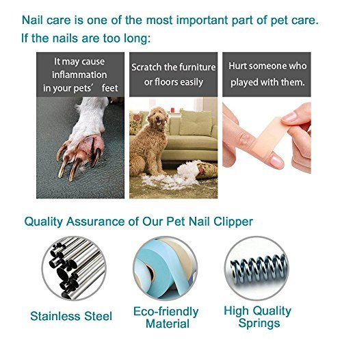 G-CHANGE Dog Nail Clippers and Trimmer - Professional Pet Nail Clipper for Small Medium Large Breeds with Quick Safety Guard to Avoid Overcutting - Free Nail File Included