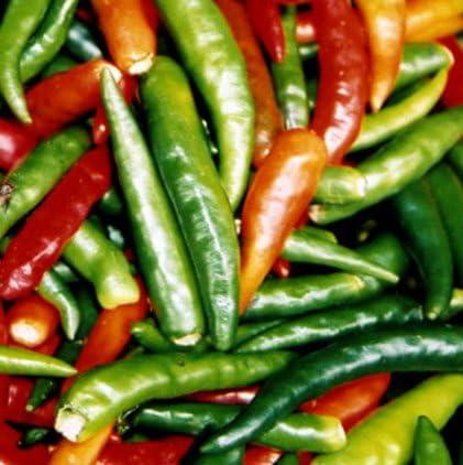 Amazon Com 300 Anaheim Chili Pepper New Mexico Chili Pepper Capsicum Annuum Vegetable Seeds Vegetable Plants Garden Outdoor