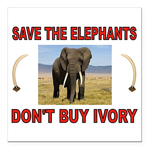 Ivory Tusk Carving (CafePress - ELEPHANTS Square Car Magnet 3