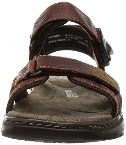 da Uomo Brown Sandalo Leather Sun Raffe Clarks Marrone tw68Tq8