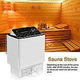 ECO LLC Sauna Heater 6KW Dry Steam Bath Sauna