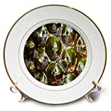 3dRose Lens Art by Florene - Pottery Abstracts - Image of Shiny Mirror Reflective Orbs - 8 inch Porcelain Plate (cp_291449_1)