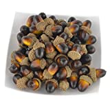 SAMYO 60PCS Artificial Fruit Nutty-brown Acorns Lifelike Simulation Small Acorn Set for Fall Table Scatter Crafting, drawing ,Home House Kitchen and Autumn Decorating