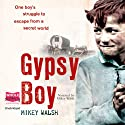 Gypsy Boy Audiobook by Mikey Walsh Narrated by Mikey Walsh