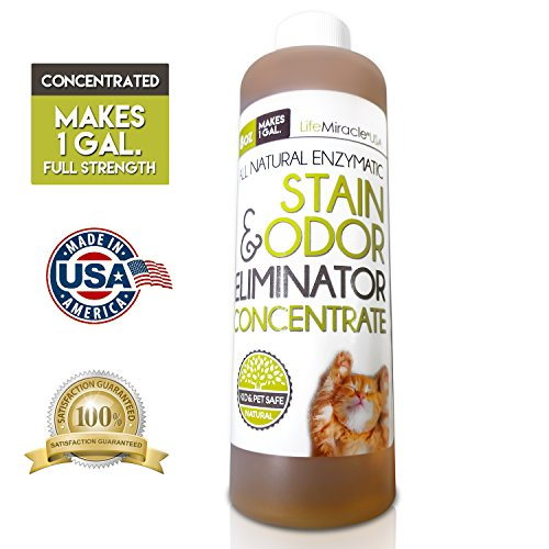 enzyme-cleaner-concentrate-all-natural-stain-remover-odor-eliminator-neutralizer-best-carpet-rug-clo