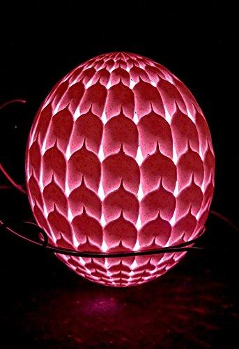 Ostrich Egg Lamp - 4