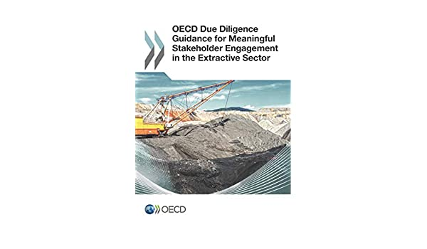 Oecd Due Diligence Guidance For Meaningful Stakeholder Engagement In The Extractive Sector Oecd 9789264252400 Amazon Com Books