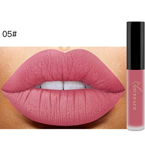 ANBOO New Matte Lip Lip Gloss Waterproof Makeup Liquid Lipstick (E)