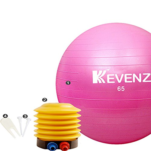 Professional Grade Pump (KEVENZ Exercise Ball,Professional Grade Exercise Equipment Anti Burst Tested with Hand Pump,Supports 2200lbs,65cm Balance Fitness Balls (Pink))