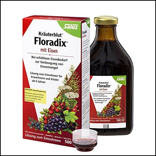 [Floradix Iron + Herbs Liquid Extract Formula 17floz] (Herbal Iron)