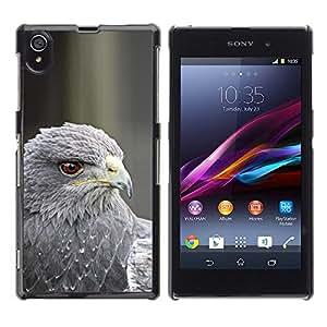 Pluma del halcón gris Pájaro de la presa Pico de ojos- Metal de aluminio y de plástico duro Caja del teléfono - Negro - Sony Xperia Z1 L39