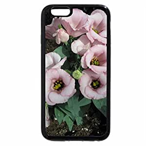 iPhone 6S / iPhone 6 Case (Black) Colorful Flowers a garden makeup 72