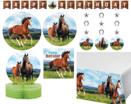 Wild Horses Birthday Party Supplies in a Horse and Pony Design (Deluxe Party Pack) ()