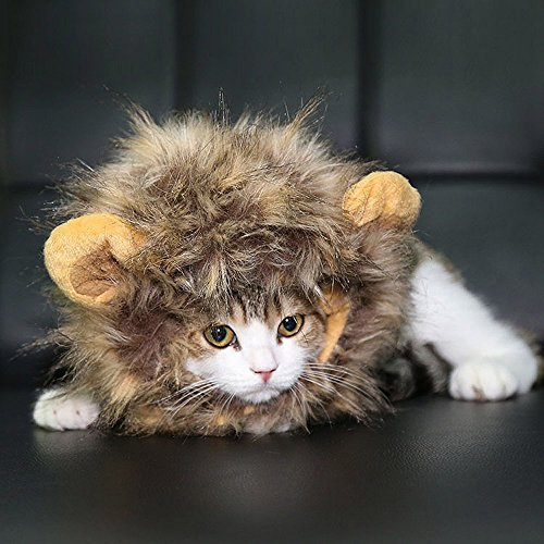 Cat Furry Costume (FAMI Pet Costume Lion Mane Wig with Ears, Christmas Costumes Festival Party Clothes Fancy Dress up for Dog Cat - Brown)