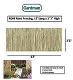 Gardman R644 Reed Fencing, 13' Long x 3' 3