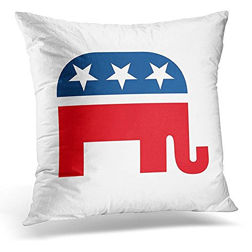Throw Pillow Cover Ron Republican Paul Mitt Romney President Tea Decorative Pillow Case Home Decor Square 18x18 Inches ()