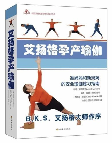 Iyengar Yoga for Pregnancy and Birth (Chinese Edition ...
