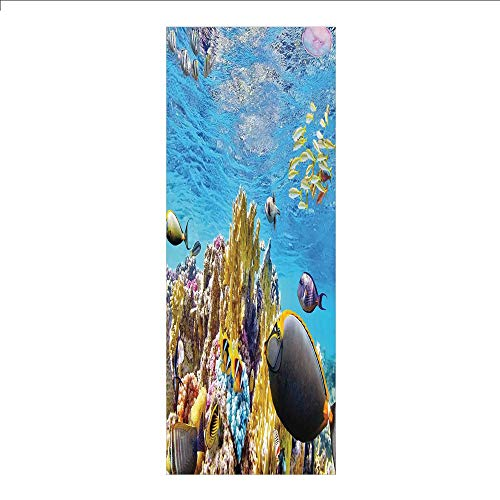 3D Decorative Film Privacy Window Film No Glue,Ocean,Tropical Exotic Coral Reefs Fish School Jellyfish Underwater Wild Marine Life Theme,Multicolor,for Home&Office (Coral Reef Fish Cut Outs)