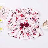 Toddler Girls Clothes Floarl Ruffle Short Sleeve