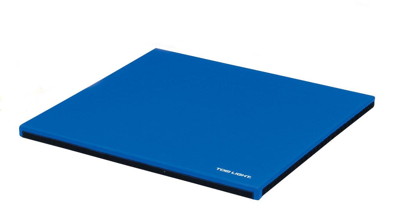 【お得】 トーエイライト(TOEI LIGHT) LIGHT) T-2799 プレイランドマット90/90 ブルー T-2799 B00I1OWNAM ブルー ブルー, TONY style<トニースタイル>:c785bece --- arianechie.dominiotemporario.com