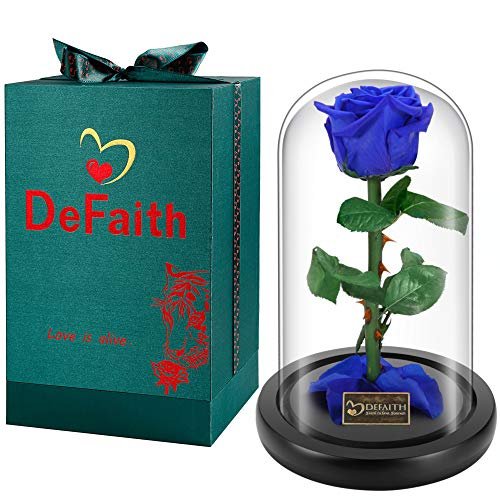 DEFAITH Real Rose 9'' Beauty and The Beast Enchanted Rose in Glass Gift for Her Valentines Day Anniversary Birthday Mother Day Christmas - Sapphire Blue, 9