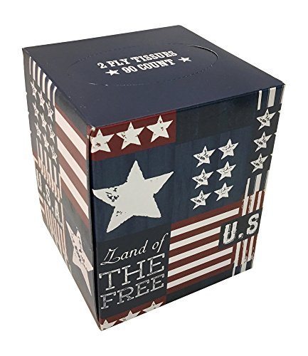 (American Flag Patriotic Stars and Stripes Tissue Box Red White and Blue)