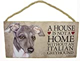 A House Is Not a Home Without a Italian Greyhound - 5