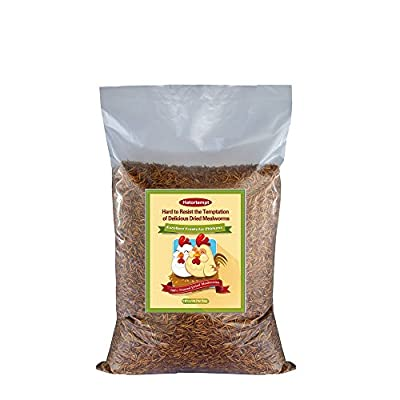 11 LBS Bulk Dried Mealworms for Wild Birds, Chichens, Duck etc by SUPERIOR PET SUPPLIES INC