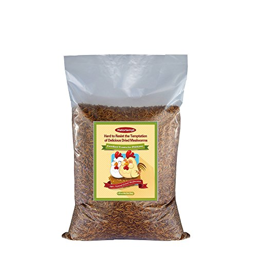 11-lbs-bulk-dried-mealworms-for-wild-birds-chichens-duck-etc