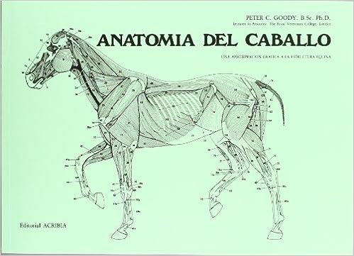 Descarga gratuita de audiolibros en español. Anatomía del caballo FB2