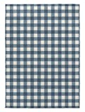 KAVKA Designs Blue Gingham Area Rug, (Blue/Ivory) - ENCOMPASS Collection, Size: 3x5x.5 - (MGTAVC2139RUG35)