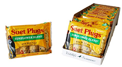 Top 10 recommendation suet plugs for birds