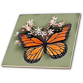 3dRose ct/_4663/_1 Monarch Butterflies Ceramic Tile 4-Inch