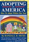 Adopting in America, Randall B. Hicks, 0963163841
