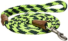 Mendota Dog Products 3/8-Inch by 6-Feet Snap Leash, Small, Diamond Jade Green/Lime