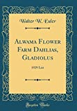 Amazon / Forgotten Books: Alwama Flower Farm Dahlias, Gladiolus 1929 List Classic Reprint (Walter W. Euler)