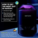 Katchy Indoor Insect Trap - Catcher & Killer for