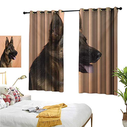 "Superlucky Decorative Curtains for Living Room,German Shepherd,63"" x 63"",Close-up Photo of a Young Dog in Front of Orange Backdrop,Suitable for Bedroom Living Room Study, etc."