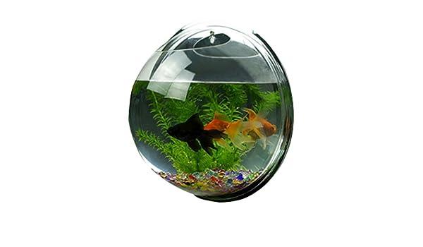 Xinliang® Burbuja de Pared Montado en Acrílico Pecera, la Exquisita Decoración Pared Adornos Decoraciones Caseras de Pescado (Tipo 4): Amazon.es: Hogar