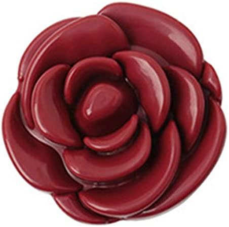 JunYe Forma de Flor Rosa Caja de Sombra de Ojos vacía Caja de lápiz Labial Envase de Embalaje cosmético Recargable Base Maquillaje Dispensador con Espejo - Vino Rojo: Amazon.es: Hogar