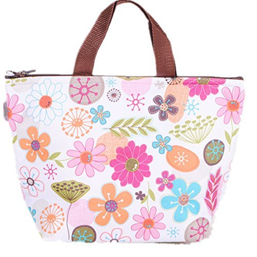 Waterproof picnic lunch bag Tote Insulated Cooler Travel organizer