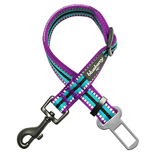 Blueberry Pet 3M Reflective Multi-Colored Stripe Adjustable Dog Seat Belt Tether for Dogs Cats, Violet and Celeste, Durable Safety Car Vehicle Seatbelts Leads Use with Harness