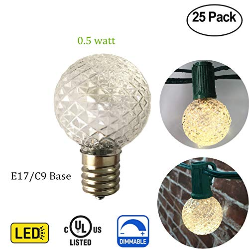 Led Christmas Lights 25 Count in US - 7